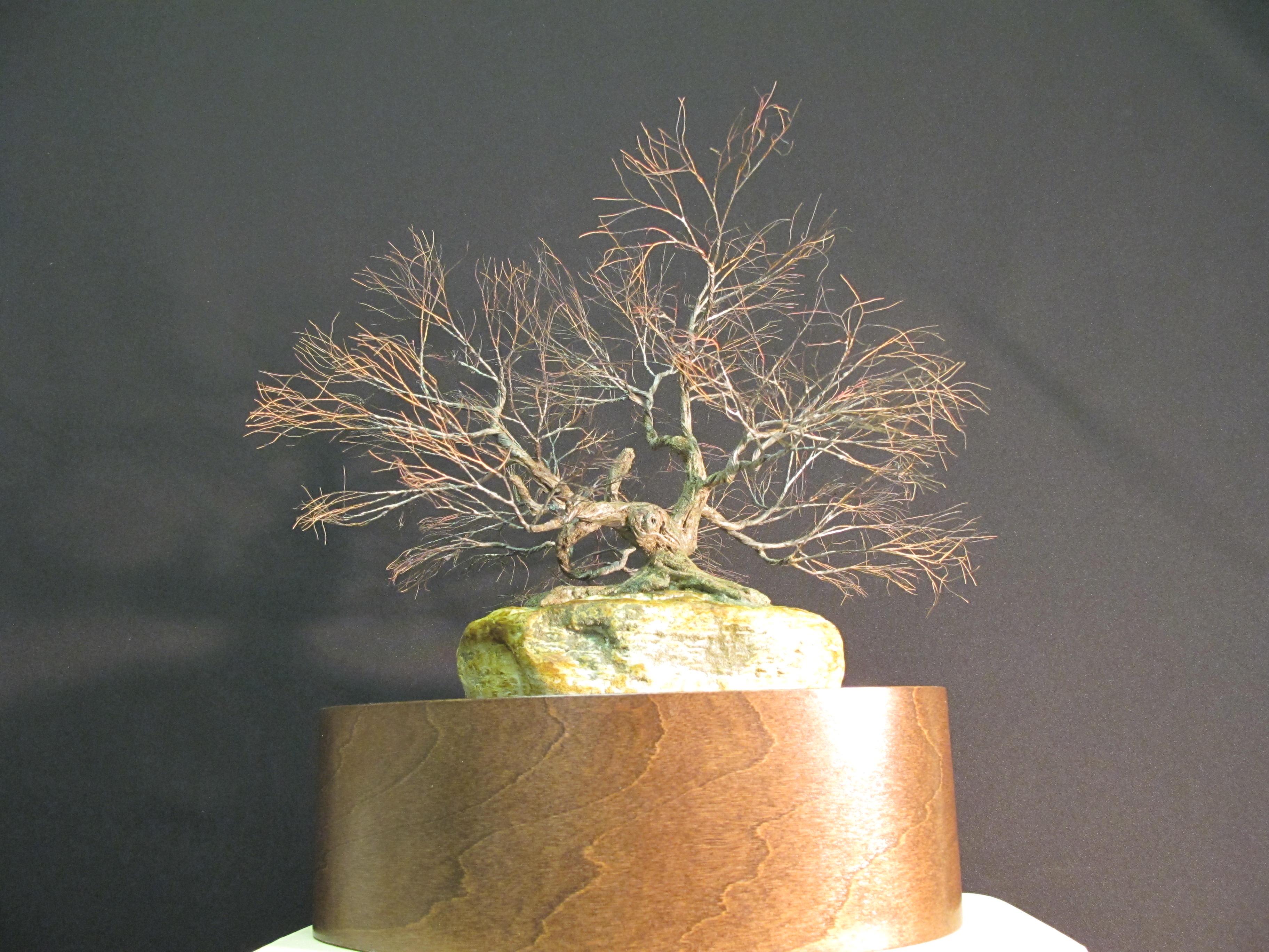 Urne en bois pour contenier les cendres des arbres urnes (6)