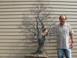 L'arbre de vie 2014 (urne familiale) 5 x 4 pieds  $15,000 (7)